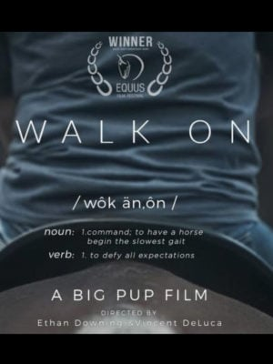 On Demand Film Festival Flix