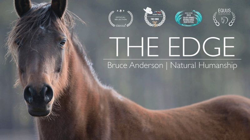 The Edge - Bruce Anderson, Natural Horsemanship