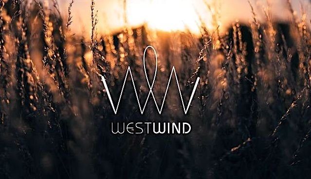 reel-recovery-film-festival-sponsor-westwind-1-640X360.jpg
